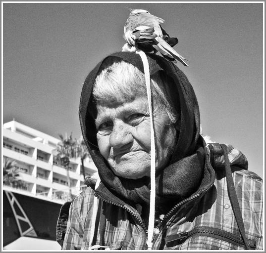 Larnakos senutė.2016
