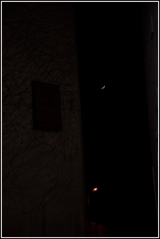 larnaca-_1-moon-fb-2